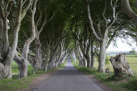 Bregagh Road Juego De Tronos