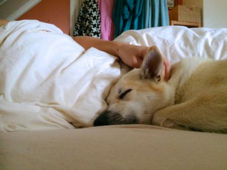 Lsito para dormir con el cuylo lleno