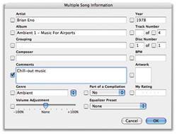 Cómo administrar una gran biblioteca de iTunes