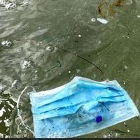 Empiezan a encontrarse miles de mascarillas en el mar: ¿qué debemos hacer con las mascarillas usadas?