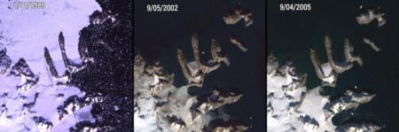 Icemelt Greenland2