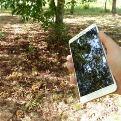 Foto 24 de 31 de la galería xiaomi-mi-max-diseno en Xataka Android