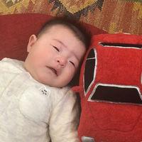 En Japón quieren parar el llanto de los bebés con un peluche que suena igual al motor del coche