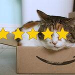 Aukey, Mpow o RavPower eran solo el principio: Amazon ya ha expulsado a más de 600 marcas por reseñas falsas