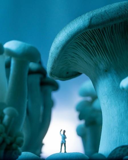 No creerás los paisajes en miniatura que creó esta fotógrafa usando comida