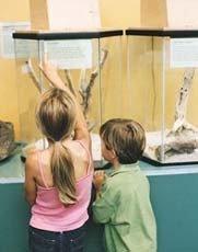 Los museos, un buen paseo para los niños