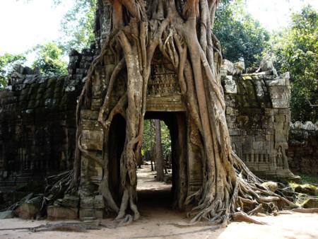 Camboya1