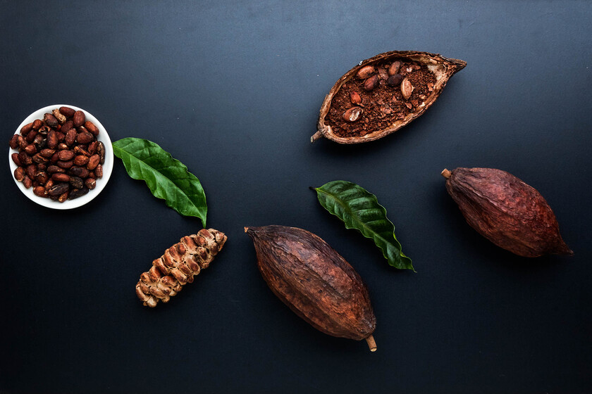 Aprender a catar e identificar el buen chocolate (o por qué más oscuro no significa más puro), según un maestro chocolatero