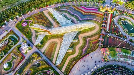Dubai Miracle Garden 6