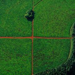 Foto 4 de 37 de la galería la-tierra-desde-el-cielo en Xataka Foto