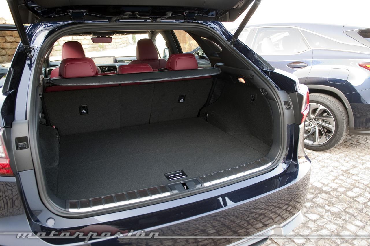 Foto de Lexus RX 450h, toma de contacto (25/28)