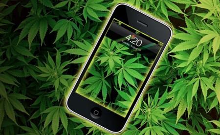 Marihuana 6