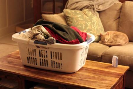Cesto de la ropa
