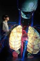 CAVEman, un modelo humano en 4D