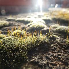 Foto 38 de 38 de la galería muestras-sony-hx99 en Xataka Foto