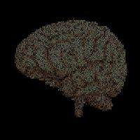 Todo el placer que sientes depende de estos tres neurotransmisores