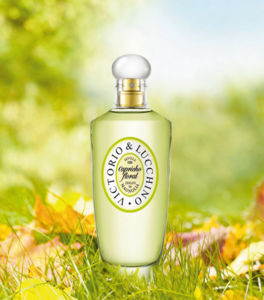 Idilio de Magnolia, la nueva fragancia de Victorio&Lucchino con pétalos blancos envueltos en encaje de Guipur
