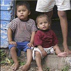 Unos 200 millones de niños menores de cinco años no alcanzan su nivel de desarrollo cognitivo