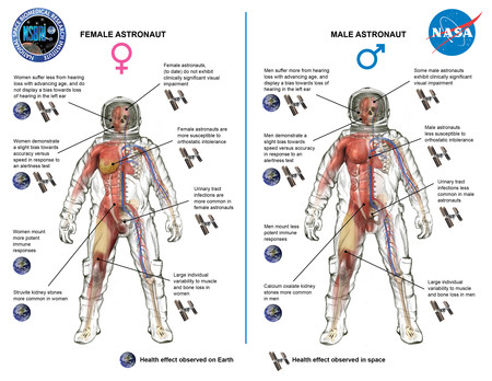 Spaceradiationgenderillustration59459 Jpg