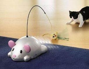 Haz que tu gato haga ejercicio