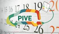 El Plan PIVE 5 tendrá que esperar, al menos, 10 días más