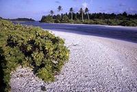 Kiribati, un archipiélago menguante