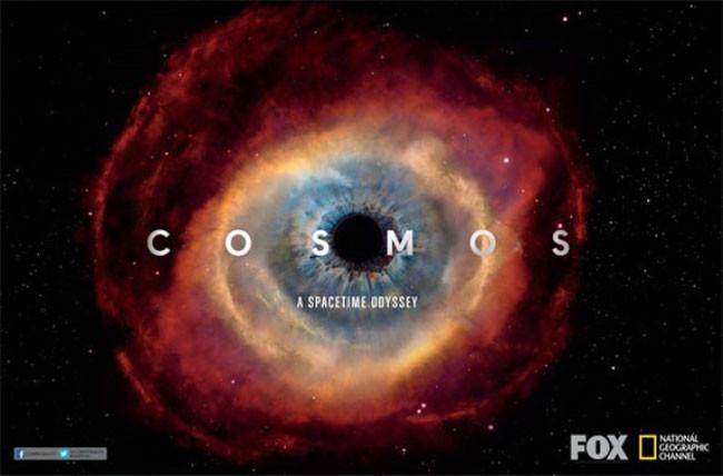 cosmos_fox