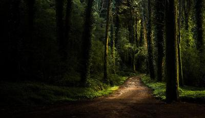 Recorrer el Parque Natural de Sintra-Cascais en 4x4