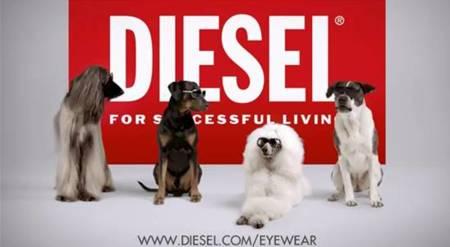Colección de gafas de Diesel para verano 2012, un vídeo de lo más inesperado