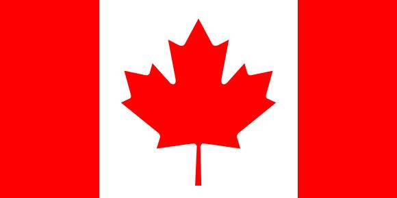 La bandera más pequeña jamás concebida