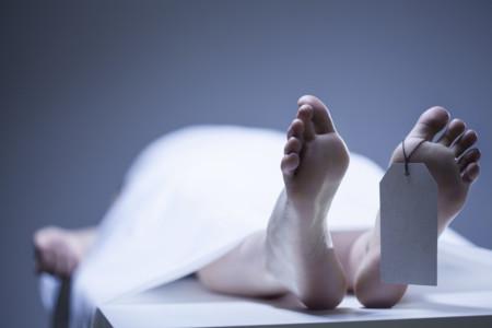 ¿Por qué nos interesa regenerar los cerebros de pacientes clínicamente  muertos?