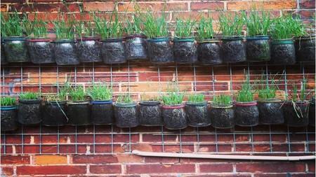 Cómo hacer un jardín vertical en casa
