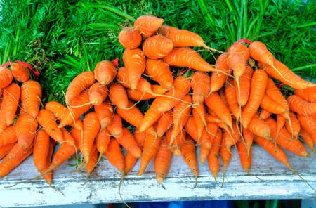 zanahorias 3