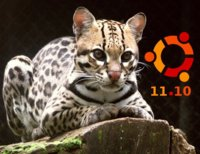Ubuntu 11.10 Oneiric Ocelot lanzado y listo para descargar