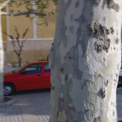 Foto 8 de 13 de la galería htc-one-x-ejemplo-fotos en Xataka