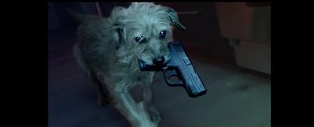 ¿Te gustó John Wick? Bien, pues han hecho el tráiler de la peli de tus sueños: Dog Wick