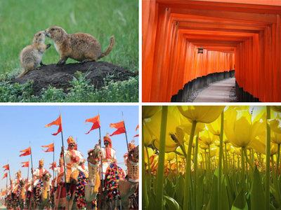 Las 14 mejores fotos del 2016 realizadas por niños según el concurso internacional de National Geographic