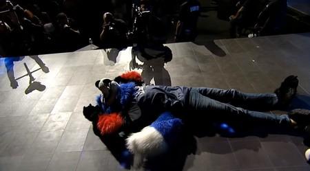 Sonic Fox Evo