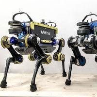 ALMA es el rival mejor preparado del perro-robot más famoso de Boston Dynamics
