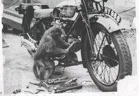 Las averías más frecuentes en nuestras motos