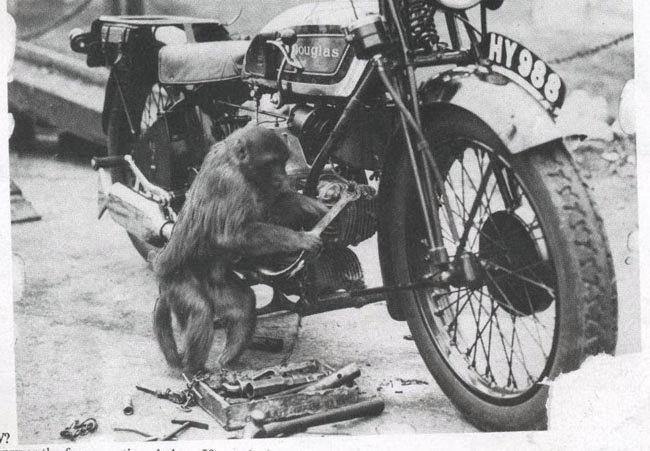 Mono mecánico