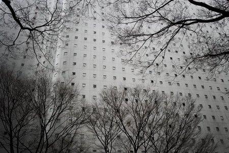 Tokio II