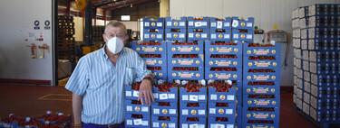 Las cerezas de Jaén que se cuelan en los bombones de licor más famosos del mundo