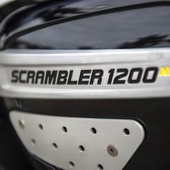 Foto 69 de 91 de la galería triumph-scrambler-1200-xc-y-xe-2019 en Motorpasion Moto