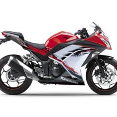 Foto 58 de 58 de la galería kawasaki-ninja-250r-2013-cambio-radical-para-la-mas-pequena-de-la-familia en Motorpasion Moto