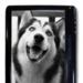 Netronix EB-300, libro electrónico con pantalla táctil