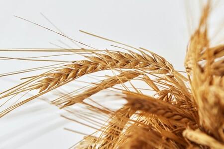 Cuáles son los cereales más saludables para alimentar a tu bebé durante su etapa de alimentación complementaria, recomendados por expertos