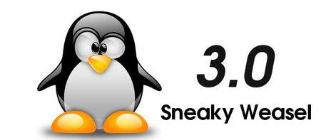 Linus Torvalds inaugura la versión 3 del kernel de Linux