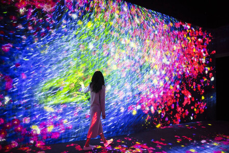 Museo De Arte Digital N Tokio