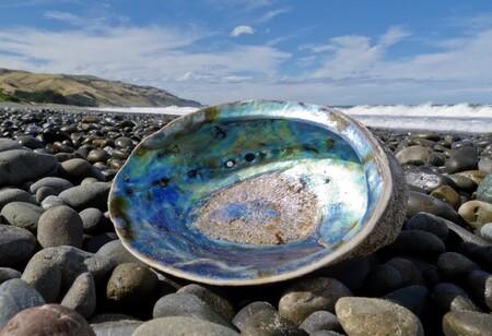Este dice ser el vidrio más resistente y fuerte hasta la fecha: prácticamente irrompible e inspirado en... moluscos